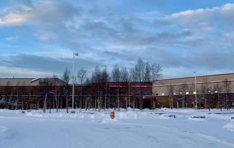 Dimond Welcomes Winter