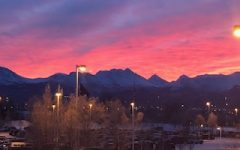 Dimond Welcomes Spring