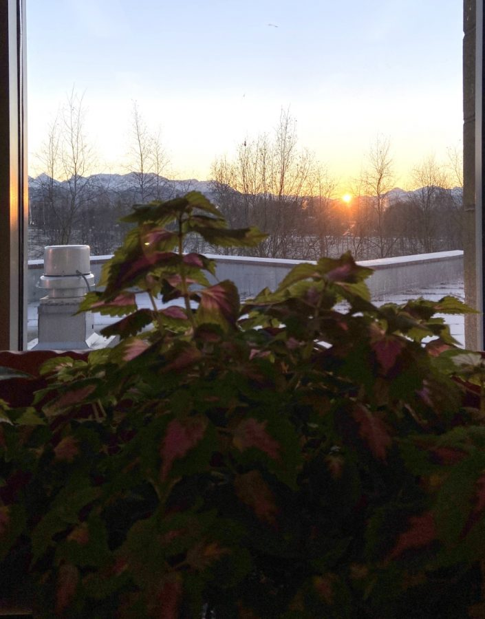 The+sun+emerges+on+a+frosty+morning+one+day+before+the+Winter+Solstice.+Photo+taken+by+Jennifer+Childress+from+her+Dimond+classroom.
